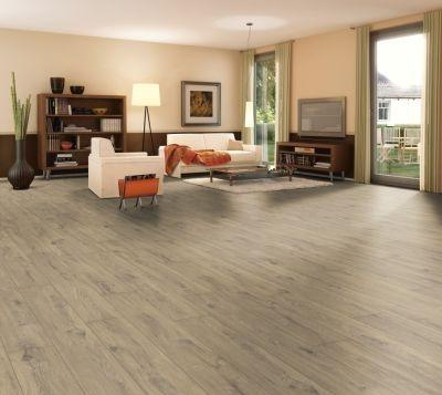 Euro Vision V4 Laminate Floors